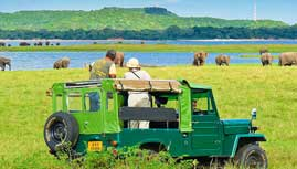 Mineriya Safari